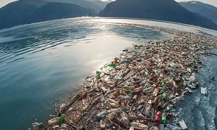The Business Case for a UN Treaty on Plastic Pollution